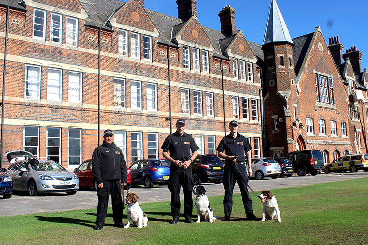 Police Search Dog Training Session